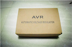 R448 automatic voltage regulator